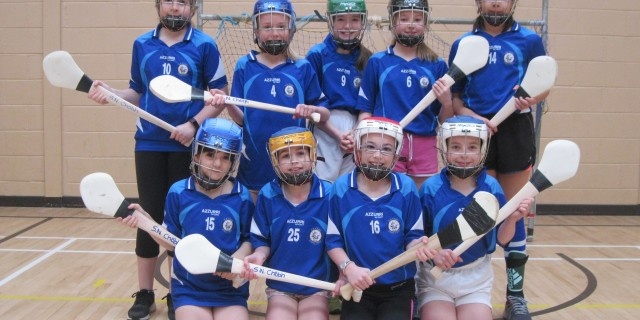 Indoor Camogie Match