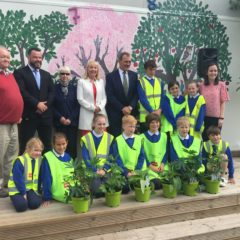 Tidy towns Kinsale present beautiful pollinator plants to add more biodiversity to our school 'gairdín'.